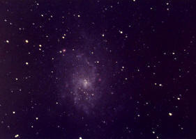 M33 - Face On Spiral Galaxy in the constellation Triangulum. Photo Copyright Ed Flaspoehler 2006